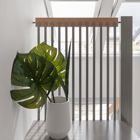 Stock up on indoor plants